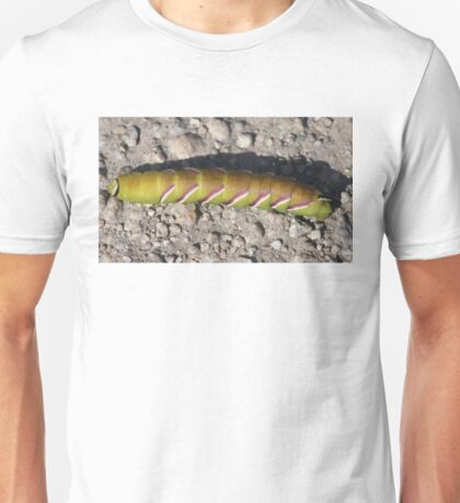 Caterpillar (Privet Hawk - Moth) Unisex T-Shirt