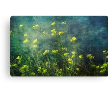 Water Weeds Canvas Print