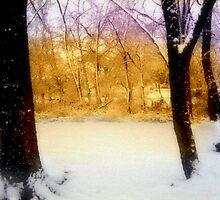 Winter by JaydeMonster