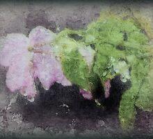 Wall Flower by DottieDees