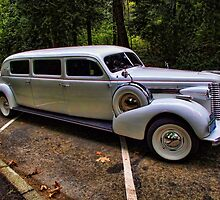 Wedding Limo in Stanley Park by Barry  Elliott