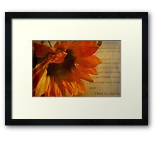 A Peaceful Moment  © Framed Print