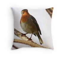 robin in the shadows Throw Pillow