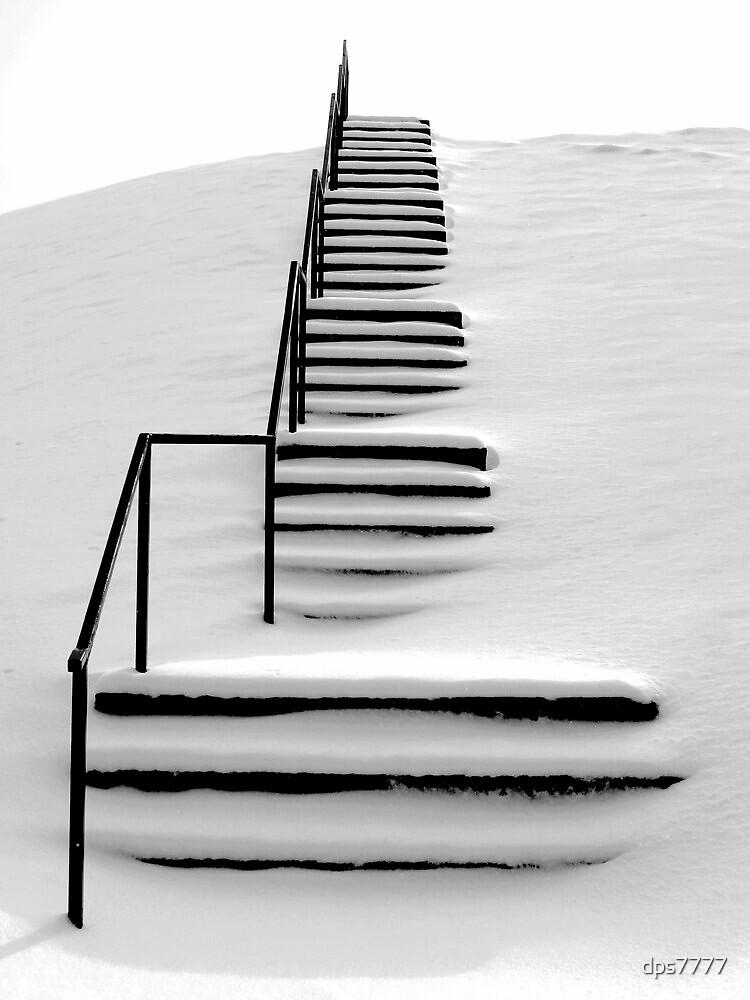 Hidden Steps by David Schroeder