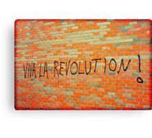 Viva La Revolution Canvas Print