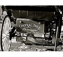 Central Park Carriages Photographic Print
