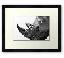 Portrait of a Rhino  Framed Print