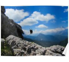 Focused Spider - Dolomites Poster