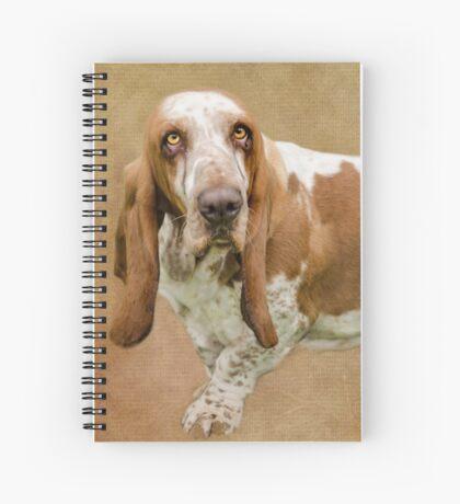 The Wonderful Basset Hound Spiral Notebook