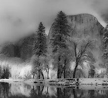 I Dream of Winterland by salim madjd