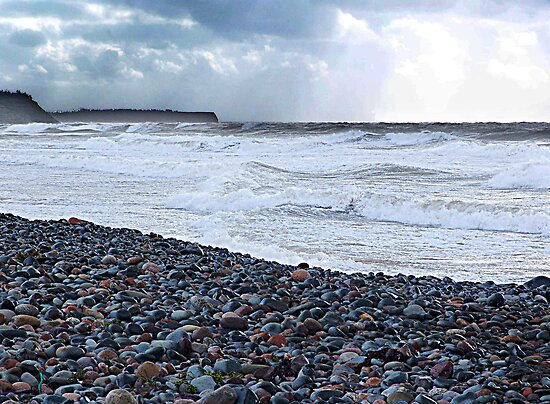 The Sea Around Us by Jann Ashworth