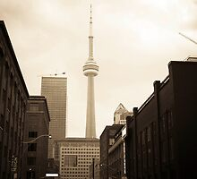g20, toronto 2010 by josephiam