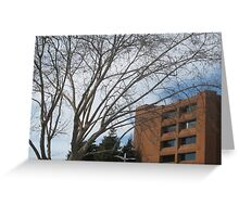 federal building  Greeting Card