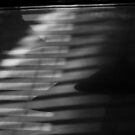 shadows at Capones, Castlemaine, vic by geof