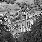 Looking Down on Rievaulx Abbey by Neal Petts