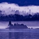 gorge mist 4 by Bruce  Dickson