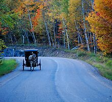 Country Roads... Take me Home... by Diane Blastorah