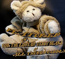 For The Love of Teddy Bears & All Things Cuddly by ArtBee