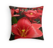 Tulipa  Series 1 Throw Pillow