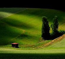 Little Valley in the Black Forest by Angelika  Vogel