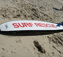 Surf Rescue by sharon wingard