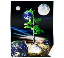The Seed Of Life Poster