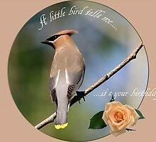 A little bird tells me .... by Vickie Emms