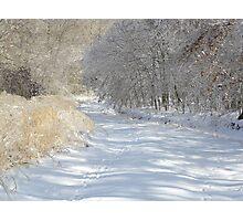 Silent Serenity Photographic Print