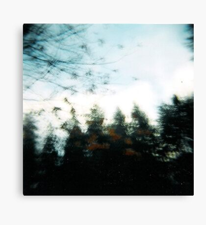 the forest in a blur. Canvas Print