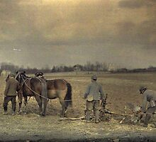 Military Ploughman by VintageImages