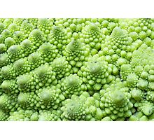 Romanesco Broccoli Photographic Print