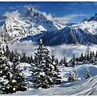 Views from Flegere ski area, Chamonix Mont Blanc. France. by AlanLongPhoto