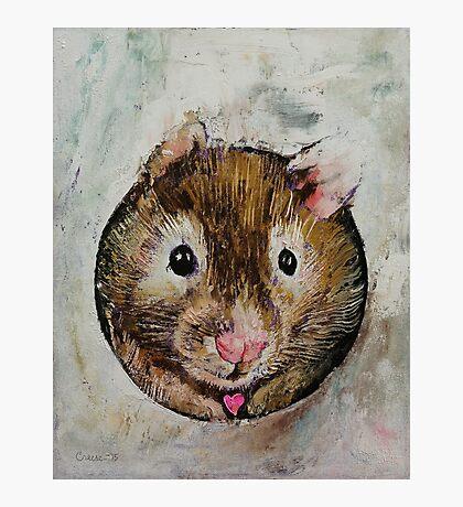 Hamster Love Photographic Print