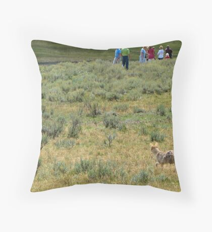 coyote on the hunt? Throw Pillow