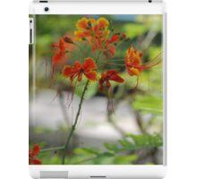 Barbados Spring Theme - Pride of Barbados (Dwarf Poinciana or Flower Fence) iPad Case/Skin