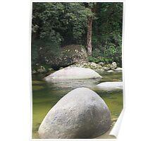 Mystic Rainforest Poster