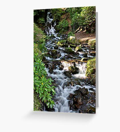 Waterfall Burrator  Dartmoor Greeting Card