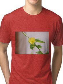 Barbados Spring Theme - Yellow Bells Esperanza Tri-blend T-Shirt
