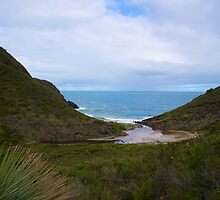Valley to the Sea by Brad Leue