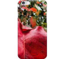 Macro Deep Red Autumn Leaf iPhone Case/Skin