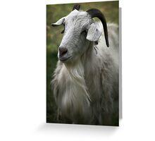 A Friendly Goat Greeting Card