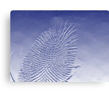 Thistle Blue Canvas Print
