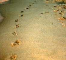 A Trail Of Little Footprints by shazart