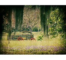 Wooden Wagon  Photographic Print