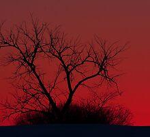 Red sky at night by Jim Cumming