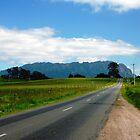 The Road to Mt Roland - Sheffield, Tasmania by RainbowWomanTas