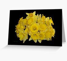 Daffodils on Ebony Greeting Card
