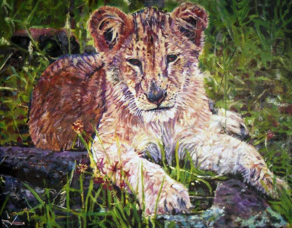 Cub by Michael Haslam