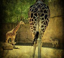 ~ The Long and Short of It ~ by Lynda Heins