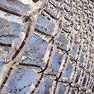 frozen fence by demonkourai